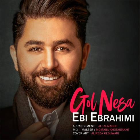 دانلود آهنگ جدید ابی ابراهیمی به نام گل نسا